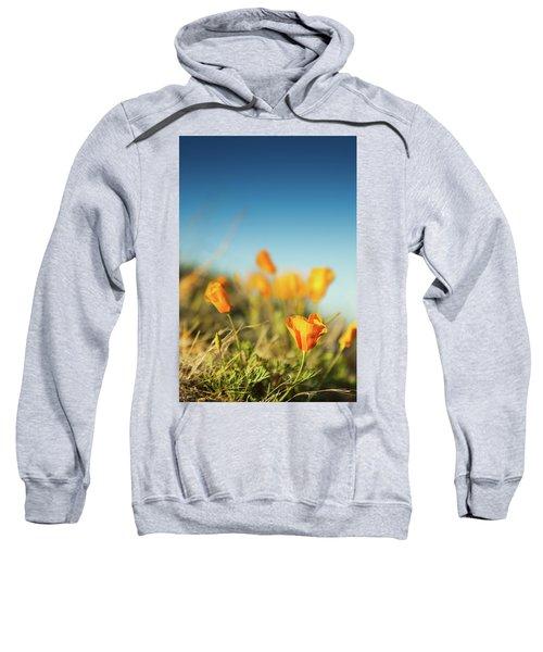 El Paso Poppies Sweatshirt