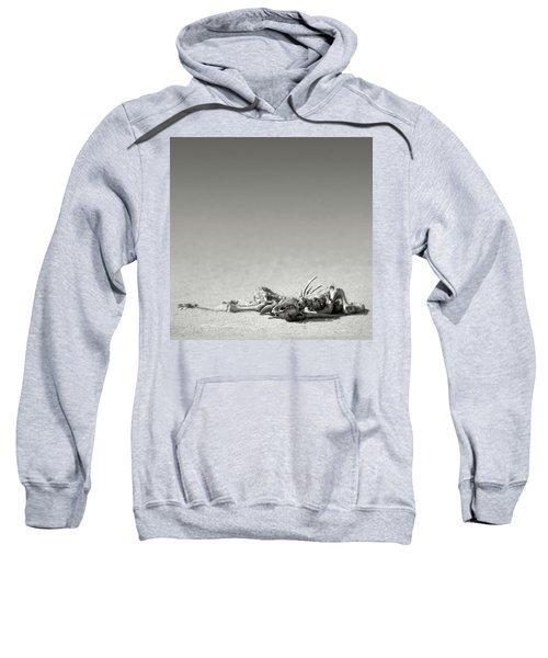 Eland Skeleton In Desert Sweatshirt