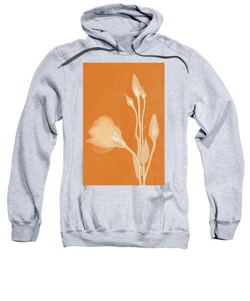 Elegance In Apricot Sweatshirt