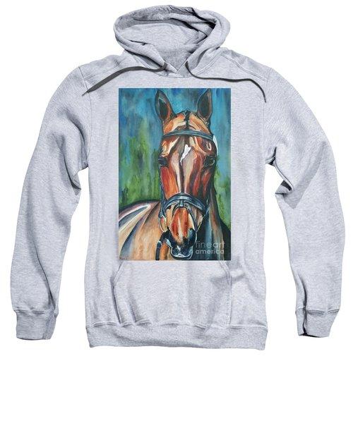 Elegance In Color Sweatshirt