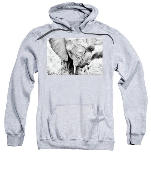 Elephant Portrait In Black And White Sweatshirt