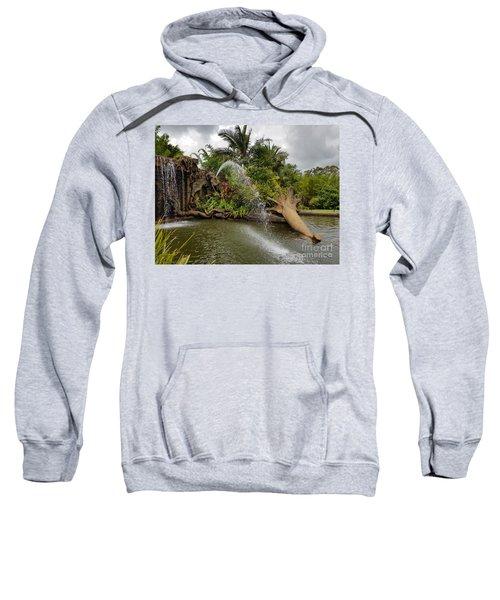 Elephant Waterfall Sweatshirt