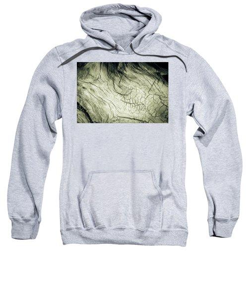 Elephant Wood Of Memory Sweatshirt
