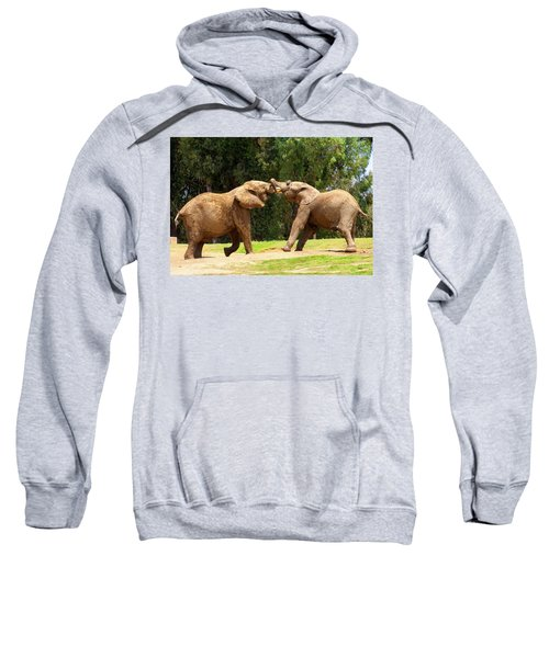 Elephants At Play 2 Sweatshirt