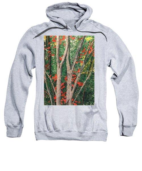 Enchanted Birches Sweatshirt