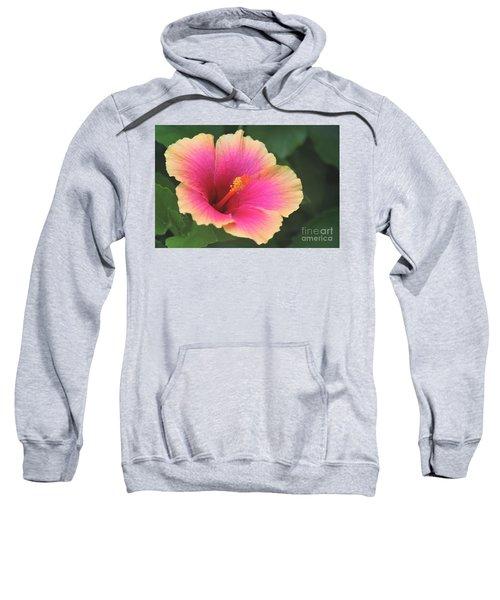 Encore Presentation - Simple Pleasure Hibiscus Sweatshirt
