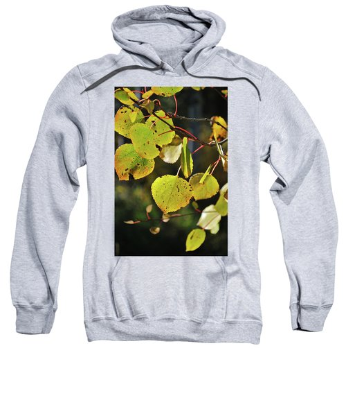End Of Summer Sweatshirt