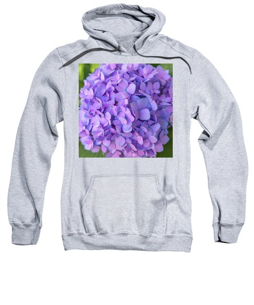 Endless Summer 2 Sweatshirt