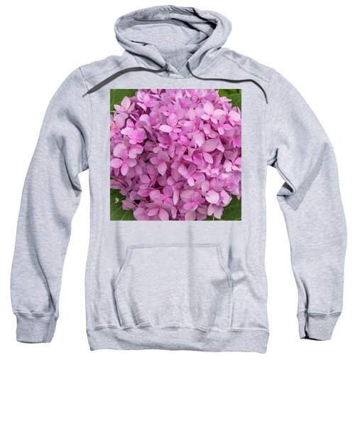 Endless Summer Sweatshirt