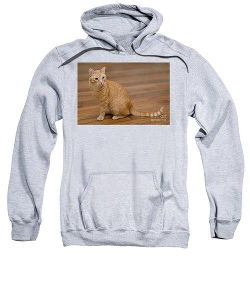 Enrique 1 Sweatshirt