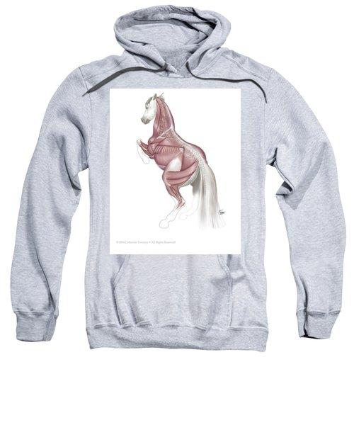 Equine Levade Sweatshirt