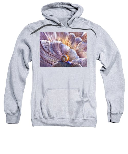 Etherial Sweatshirt