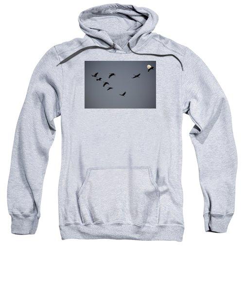 Evening Flight Sweatshirt