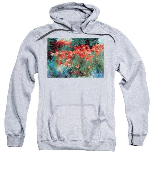 Excitment Sweatshirt