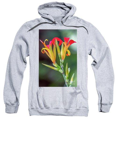 Exotic Flowers Sweatshirt