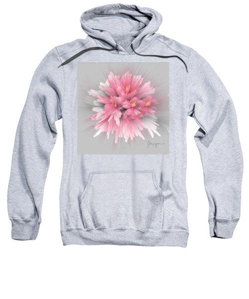Explosion Sweatshirt