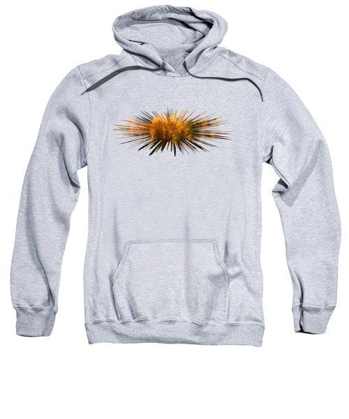Explosion Of Autumn Sweatshirt