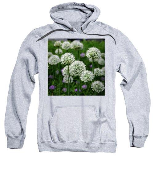 Exquisite Beauty Sweatshirt