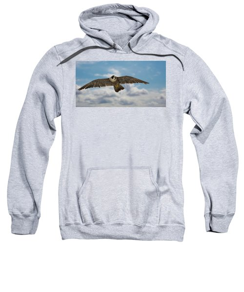 Eyes In The Sky Sweatshirt