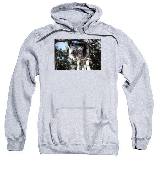 Eyes On The Prize Sweatshirt
