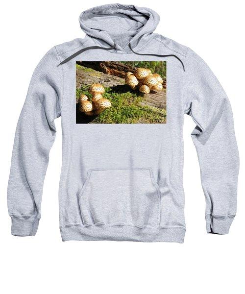 Fabulus Fungi Sweatshirt