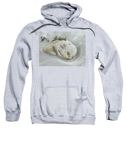 Face In The Sand At Baird Glacier Outwash Sweatshirt