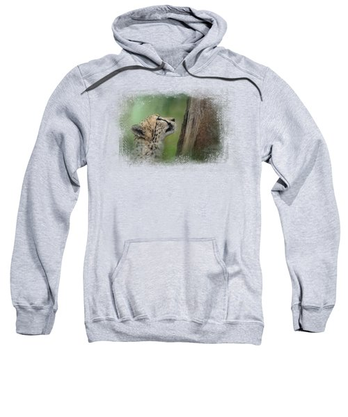Facing Challenges Sweatshirt by Jai Johnson