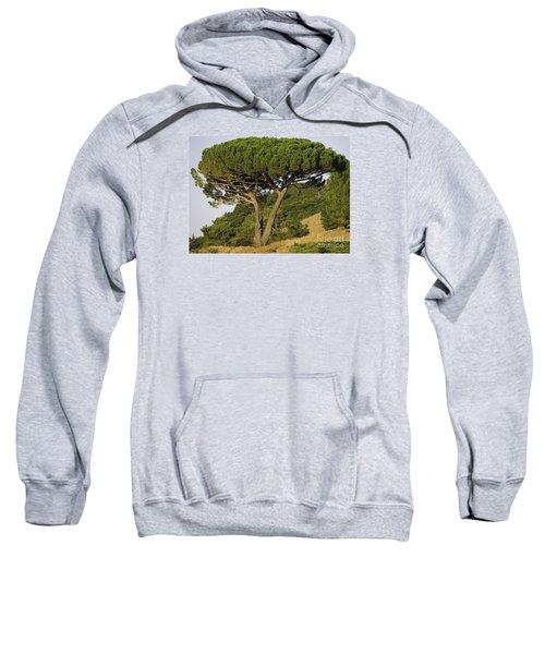 Fairfax Beauty Sweatshirt
