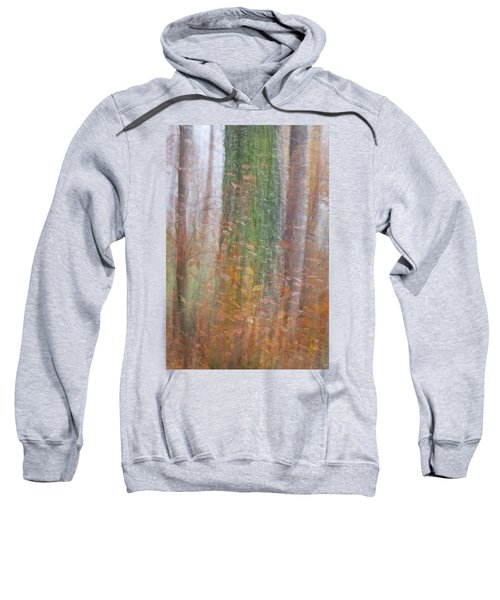 Fairy Tree Sweatshirt