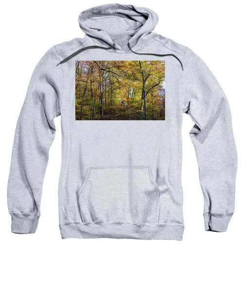 Fall Colors Of Rock Creek Park Sweatshirt