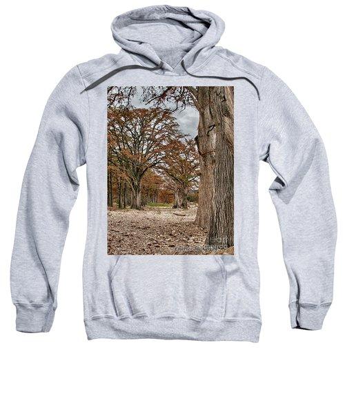 Fall In Texas  Sweatshirt