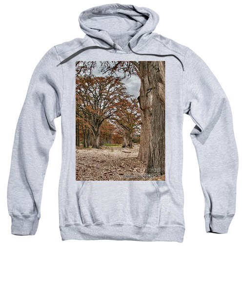 Fall In Texas  Sweatshirt