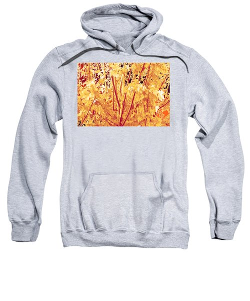 Fall Leaves #1 Sweatshirt
