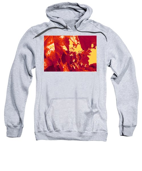 Fall Leaves #13 Sweatshirt