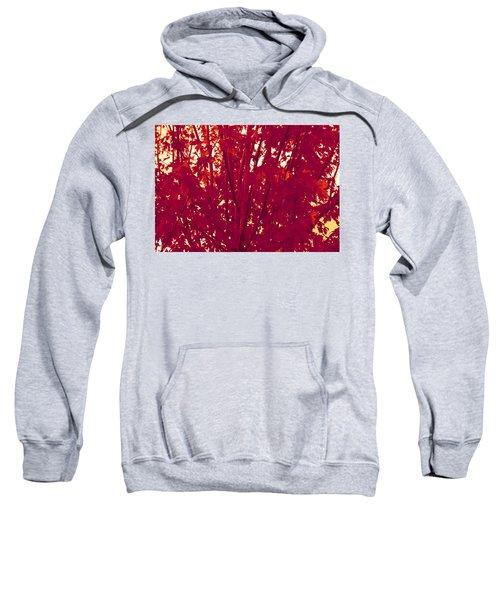 Fall Leaves #2 Sweatshirt