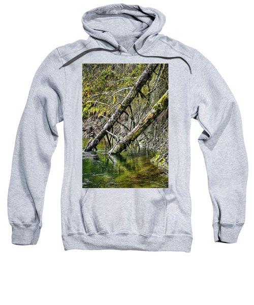Fallen Friends Sweatshirt