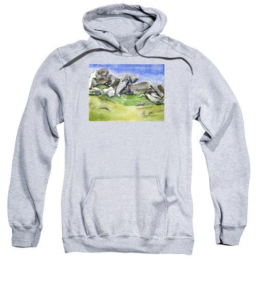 Fallen Stones Sweatshirt