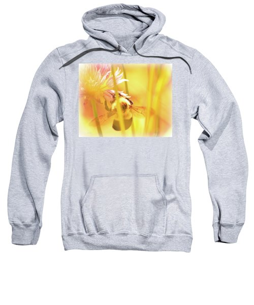Fame Is A Bee Sweatshirt by Bob Orsillo
