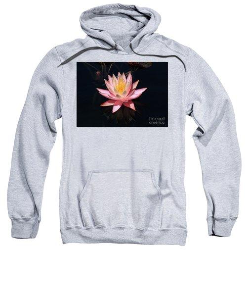 Familiar Bluet Damselfly And Lotus  Sweatshirt
