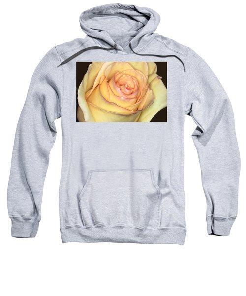 Favorite Yellow Sweatshirt