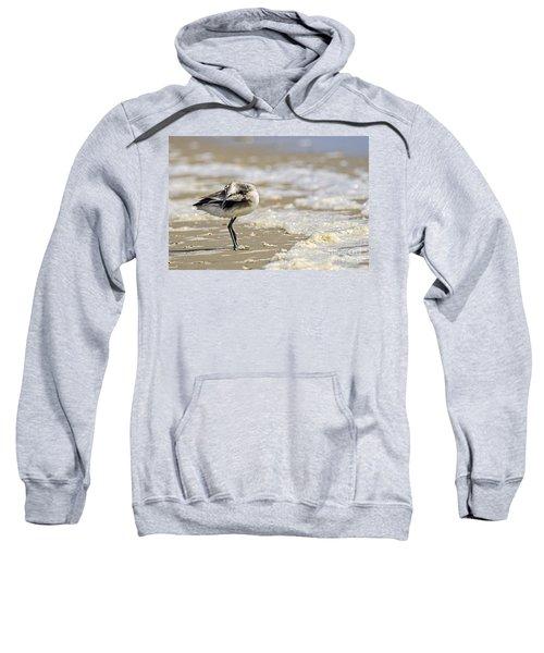 Feather Bed Sweatshirt