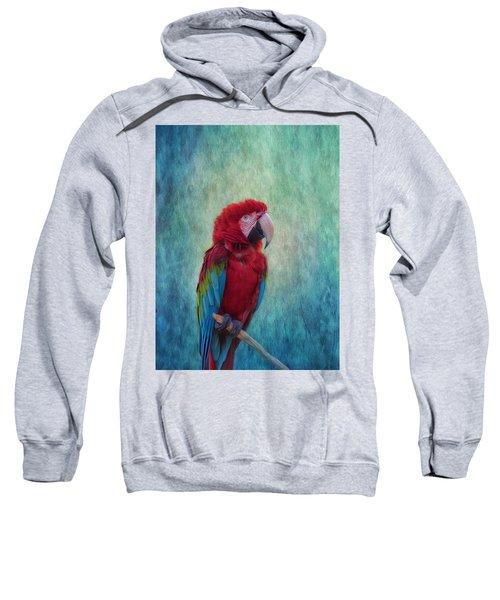Feathered Friend Sweatshirt