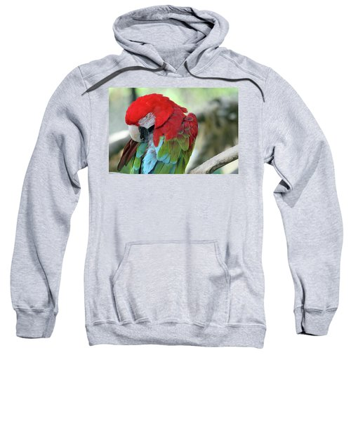 Feathers Sweatshirt