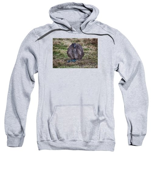 Feeling Kinda Broody  Sweatshirt by Douglas Barnard