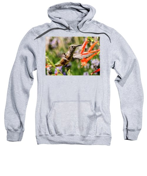 Female Broadtail Humingbird Sweatshirt