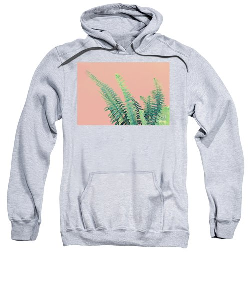 Ferns On Pink Sweatshirt