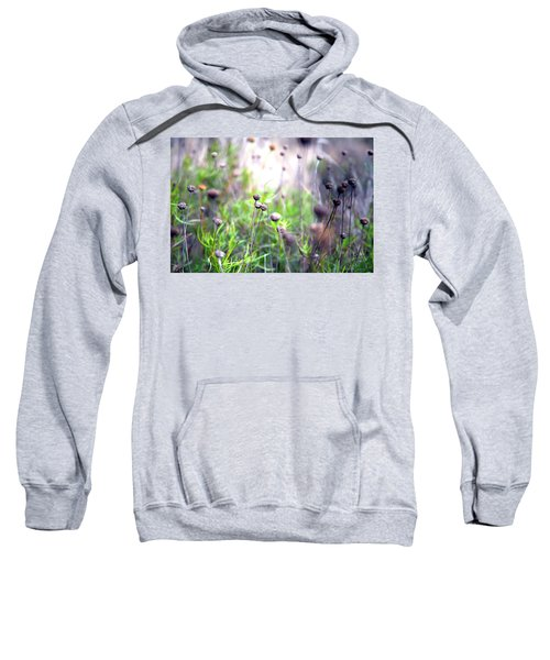 Field Flowers Sweatshirt