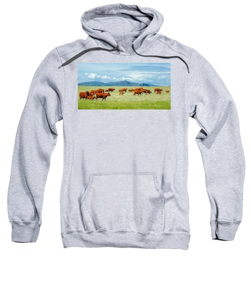 Field Of Reds Sweatshirt