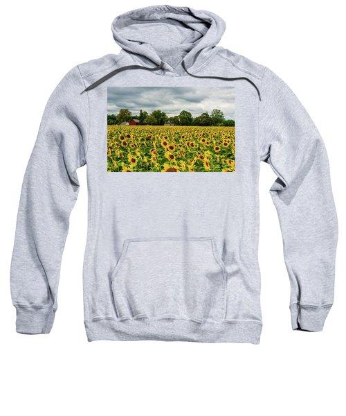 Field Of Sunshine Sweatshirt