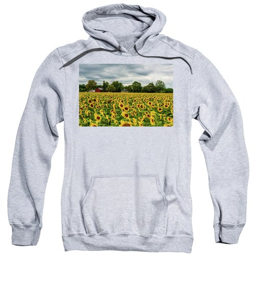 Field Of Sunshine Sweatshirt